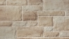 Artiste 2 product from Brampton Brick in Shoreline