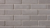 Contempo product from Brampton Brick in Nickel PRP