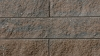 Proterra Product from Brampton Brick in Timberwood Split