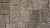 Ridgefield Plus product from Brampton Brick in Champagne