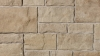 Vivace product from Brampton Brick in Lakeshore